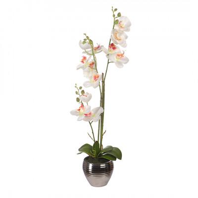 Цветочная композиция Орхидеи в керамической вазе Engard YW-SUH27